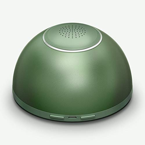GX·Diffuser Ozongenerator Luftreiniger Auto Air Purifier, Mini USB Car Ozon Luftreiniger Für Autos, Kleiderschrank, Schuhschrank, Haustierhaus